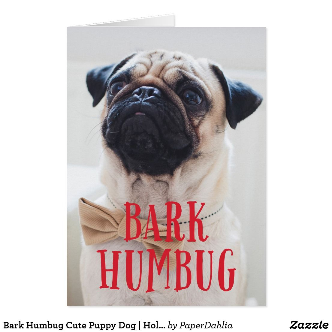 Dog Christmas Card Sayings | www.topsimages.com