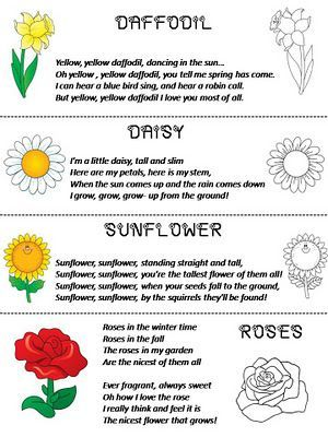 Flower Poems Daffodil Daisy Sunflower Rose Flower Poem Kids Poems Childrens Poems