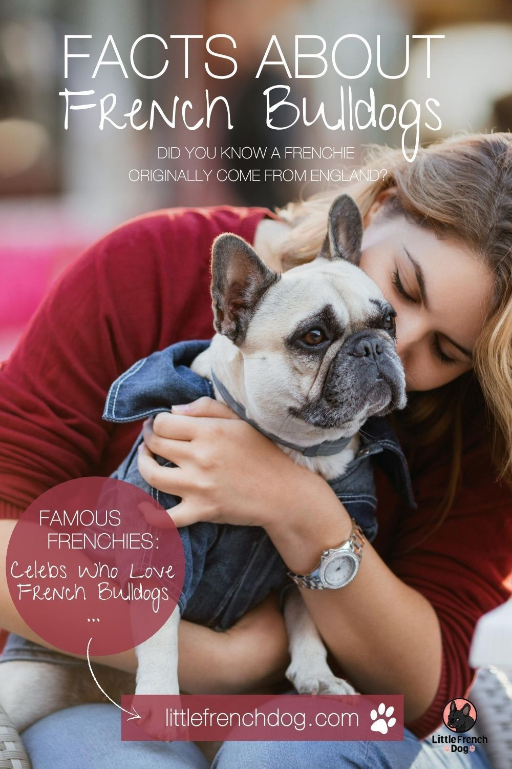 Facts About French Bulldogs Learn More In 2020 French Bulldog Bulldog Fawn French Bulldog