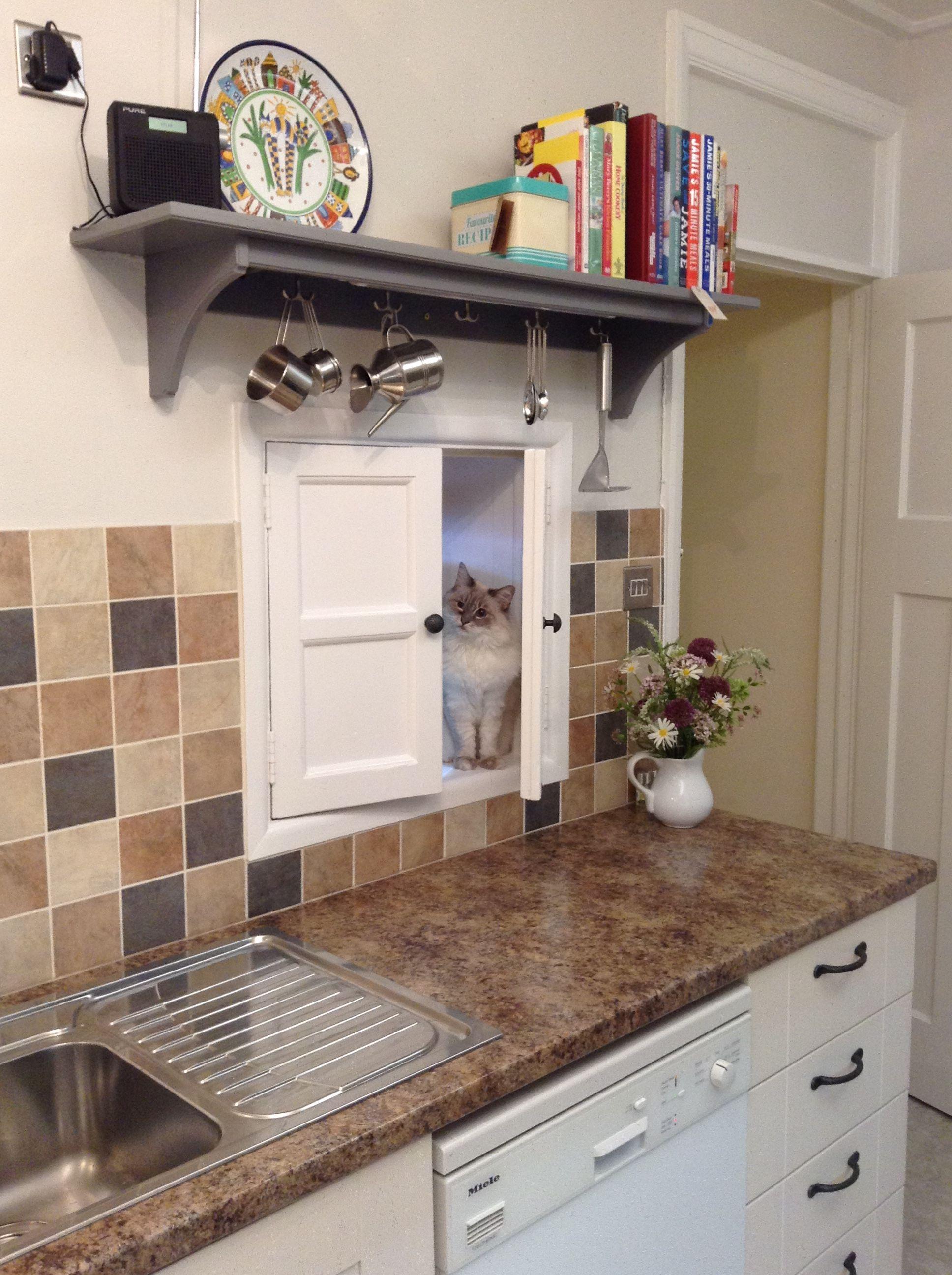 Kitten serving hatch | Kitchen layout, Kitchen, New kitchen