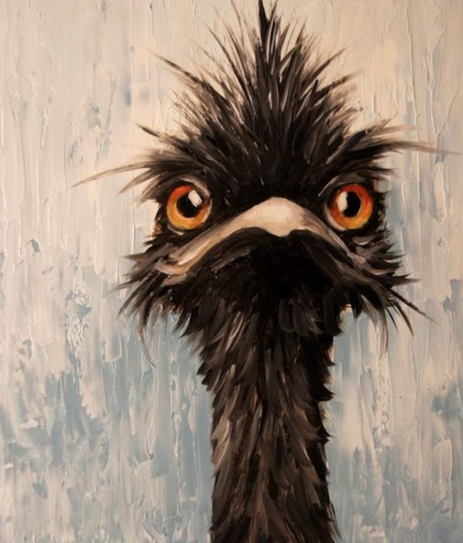 Normal Emu Pinturas De Animales Caricaturas De Animales Pinturas De Aves