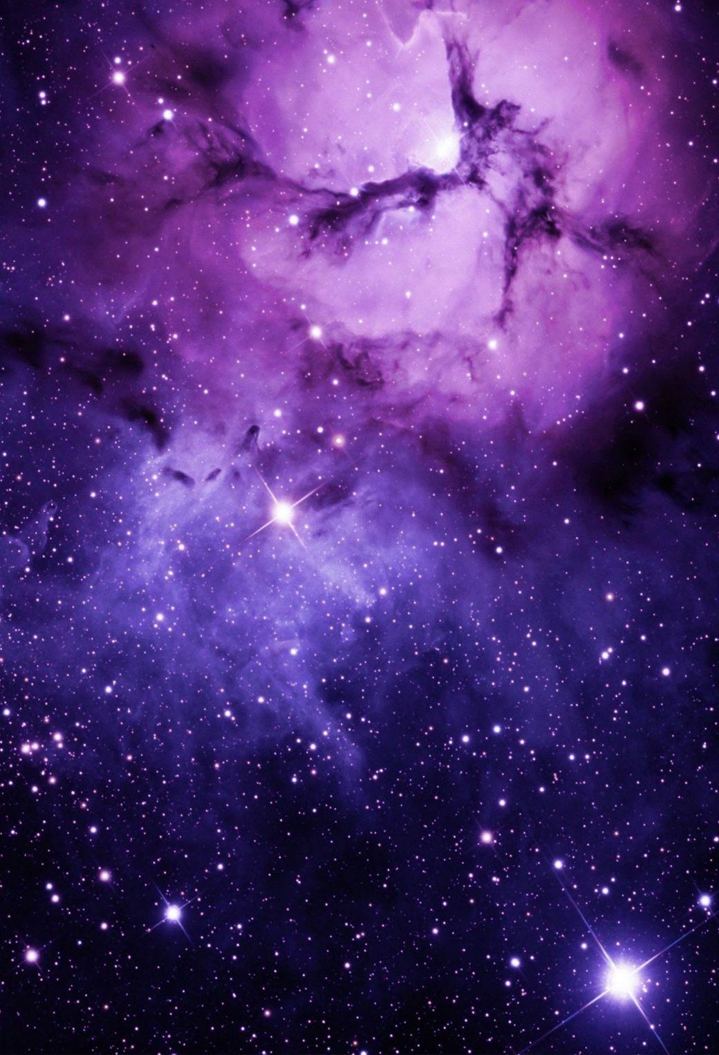 Best Wallpaper High Quality Purple - 7615a8d0c6d0d2967764625d7ca1a237  Trends_607051.jpg