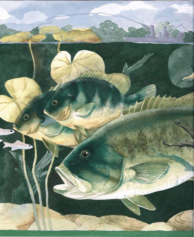 Fish Big Fish Best Of Paul Brent Wallpaper Border CTC226B