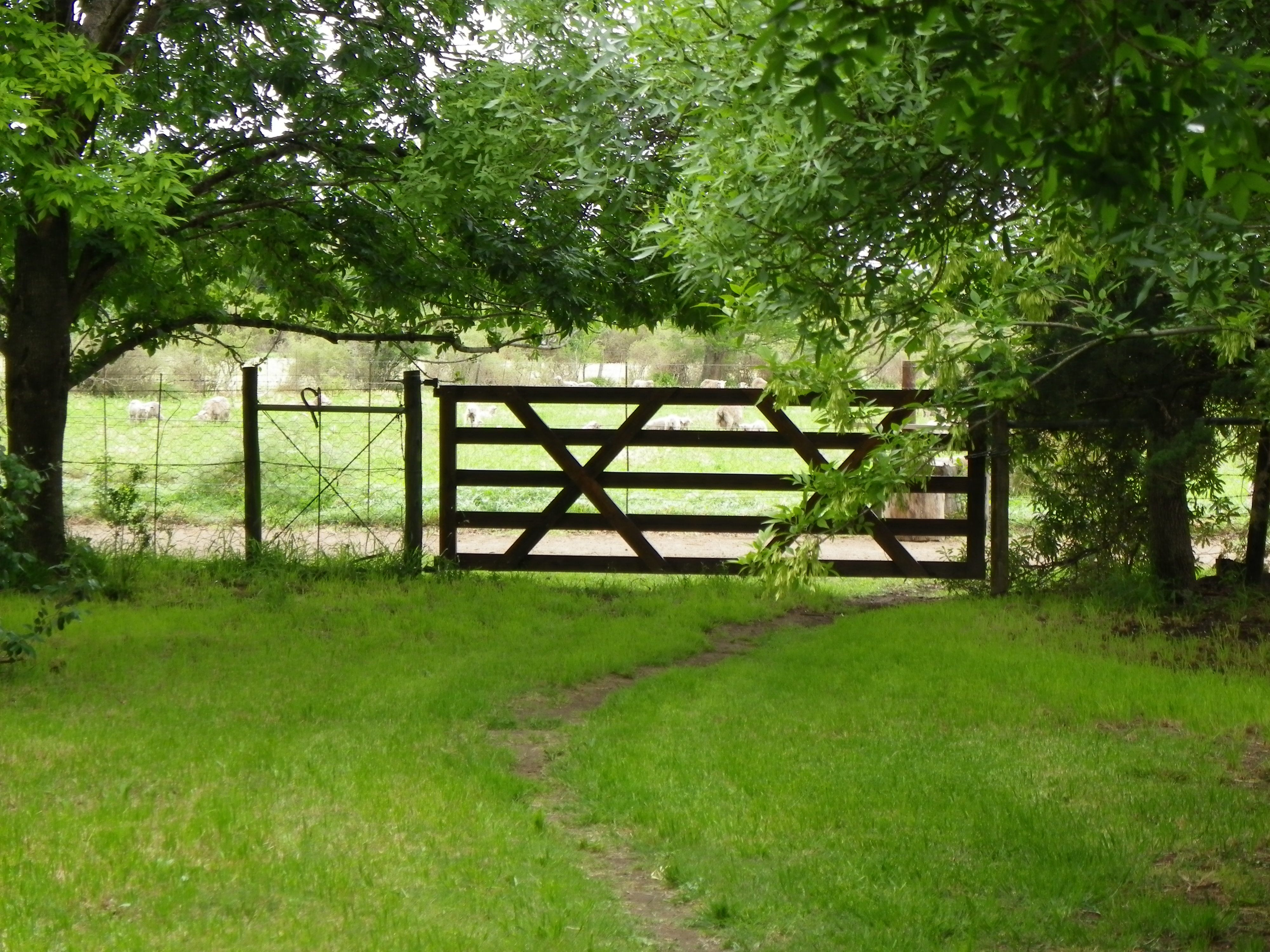 Beautiful Gate At The Bottom Of A Beautiful Garden Bedford
