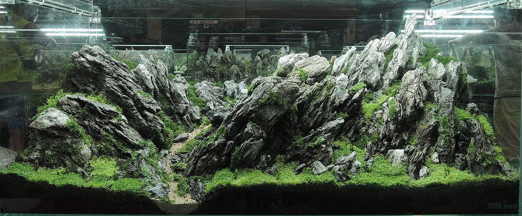 Beautiful Great AquaScaping By Chinese Artists ( Artist Name Is In Each Picture ) |  Aquascaping Hardscape | Pinterest | Aquariums, Planted Aquarium And  Aquarium ...