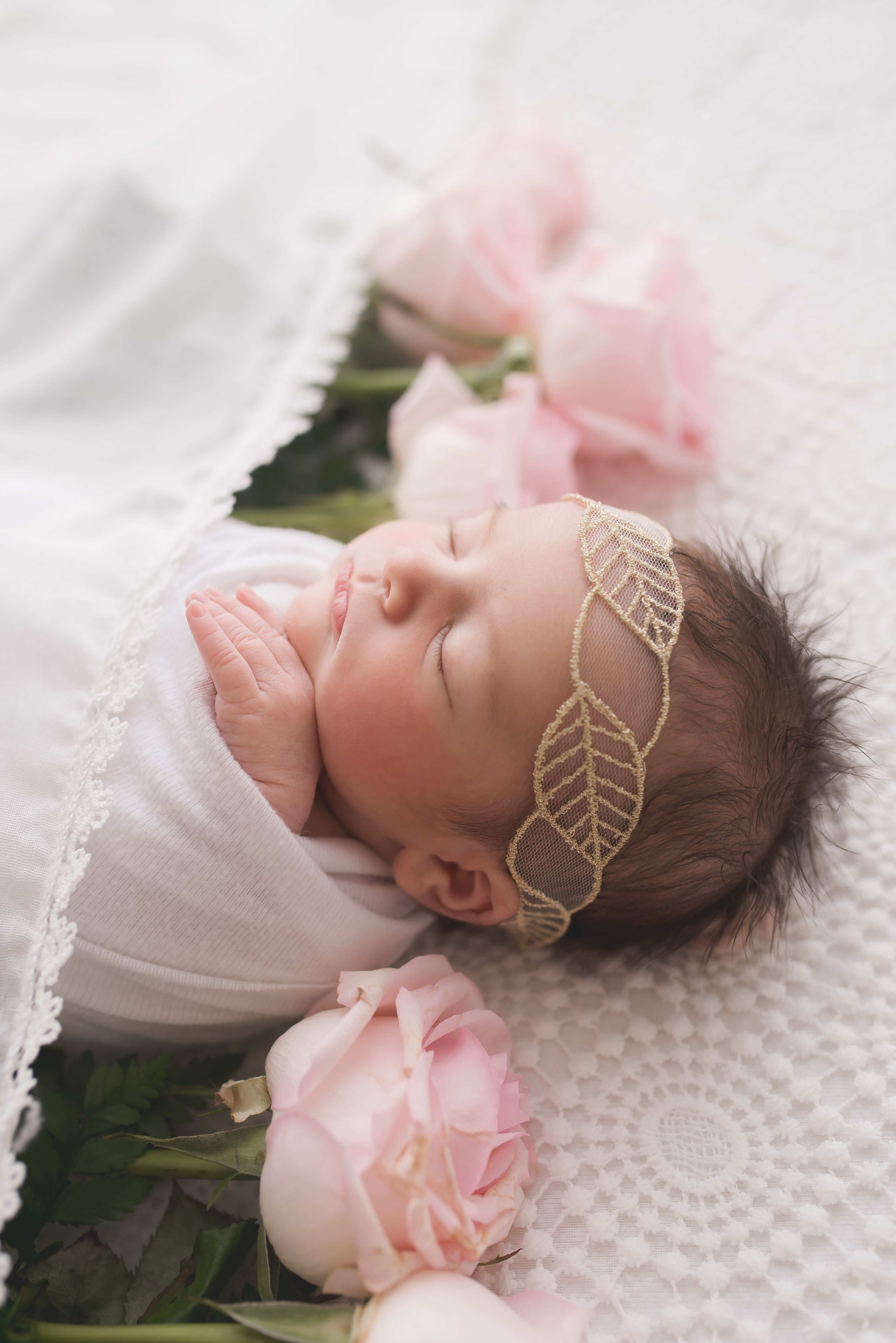 Kelly kristine photography newborn session and flowers