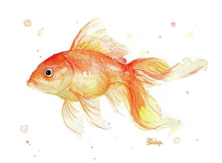 Goldfish Painting Watercolor In 2020 Watercolor Fish Fish Art