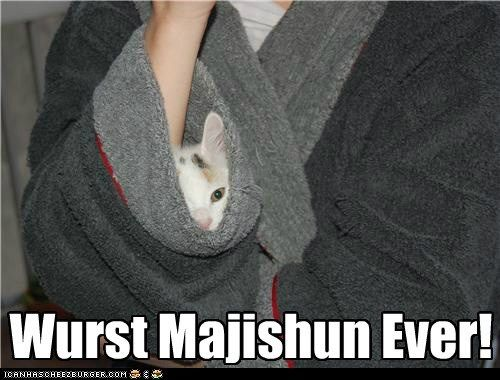Nofing up mai sleev! Cept a kitteh.