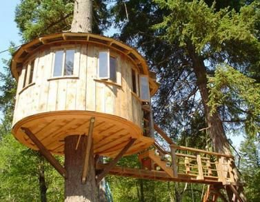 i want a tree kitchen with view so this construction may be it treehouse masters