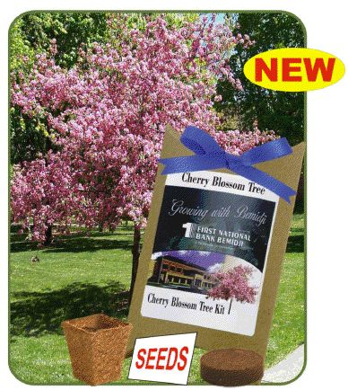 Trees 19gl1 Cherry Blossom Tree Seed Pouches Groline Asi 58295 Sage 66887 Powered By Cubecart Custom Tree Seeds Cherry Blossom Tree Cherry Blossom
