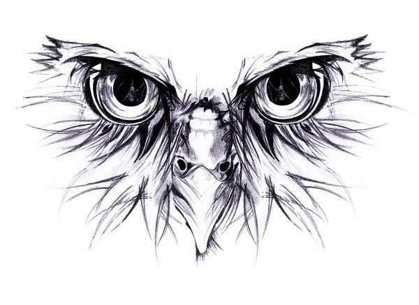 Owl Fierce Art Print By Dmtrs Owl Tattoo Drawings Owl Tattoo Design Owl Tattoo