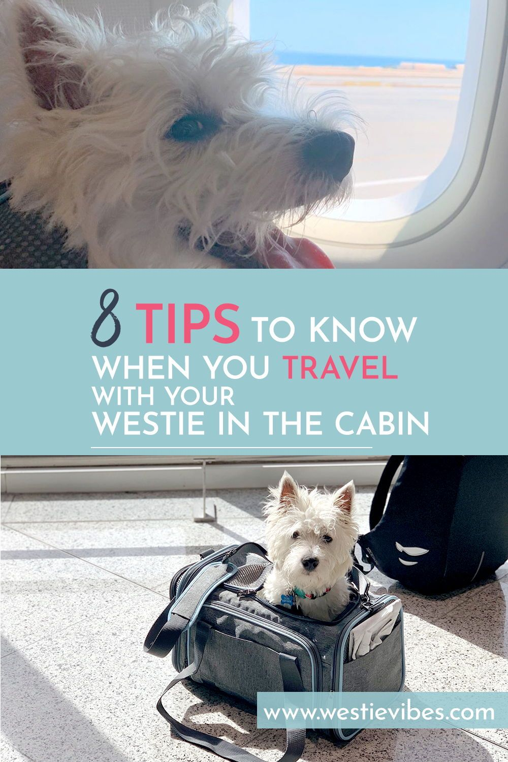 Tips To Travel With Your Westie On An Airplane Dog Travel Flying Dog Pet Travel