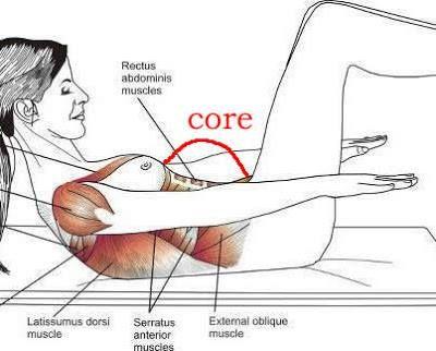 anatomia muscular espalda - Buscar con Google   Pilates   Pinterest ...