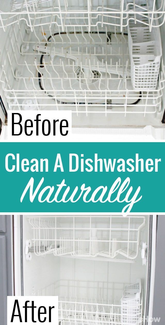 How to Clean Inside a Dishwasher (Using Natural Ingredients | For a ...