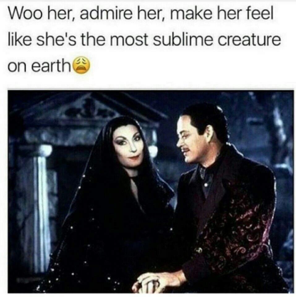 Best memes ever image by LADÝ on rεαl †αlk Addams