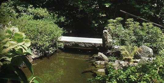 japanese garden stream with stone slab bridge