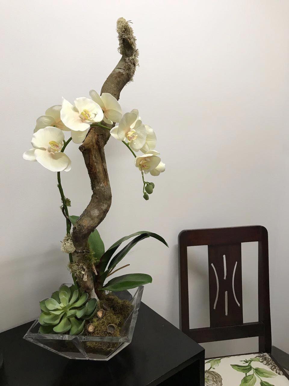 Orchids Bathroom Orchids Ideias Troncos Arranjos De Flores