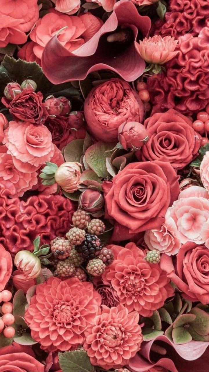 A beautiful assortment of salmon pink flowers.