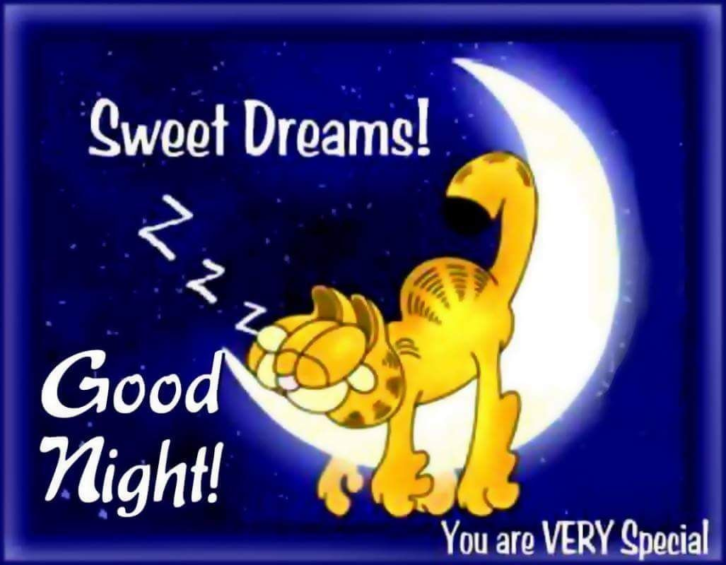 Garfield goodnight quote. | Sweet dreams images, Good night love ...