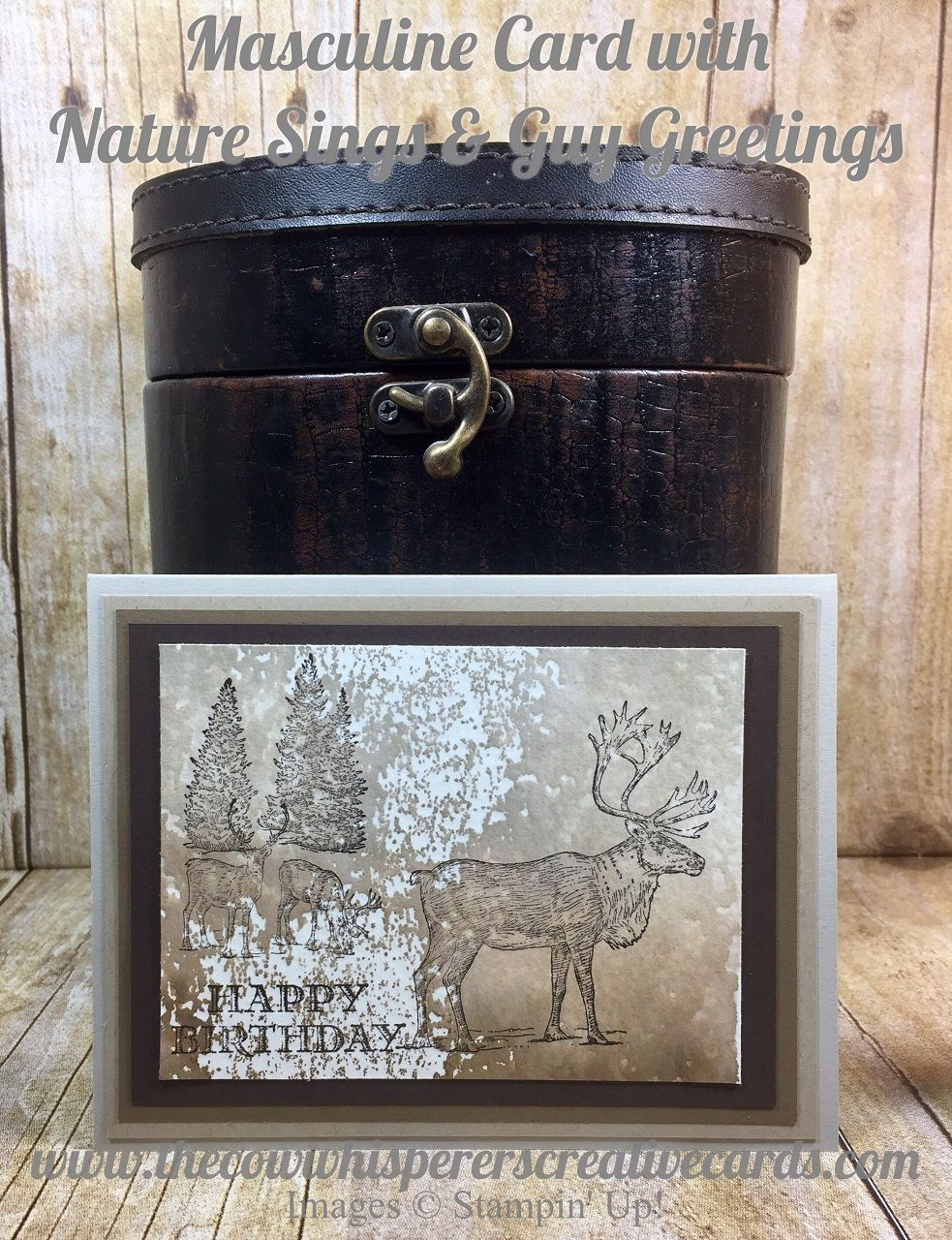 Card Making Ideas For Men Part - 45: Masculine Card With Nature Sings U0026 Guy Greetings