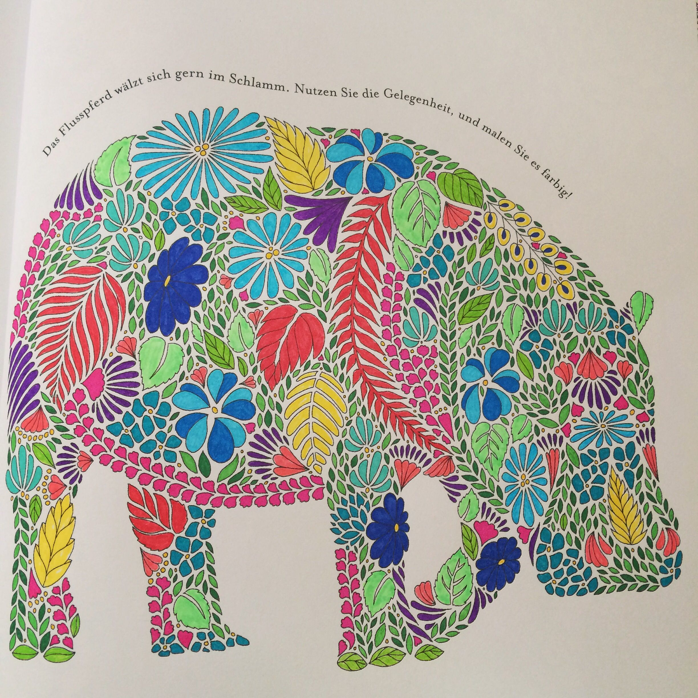 Coloring book animal kingdom - Tropical World Coloring Book Ideas Google Search