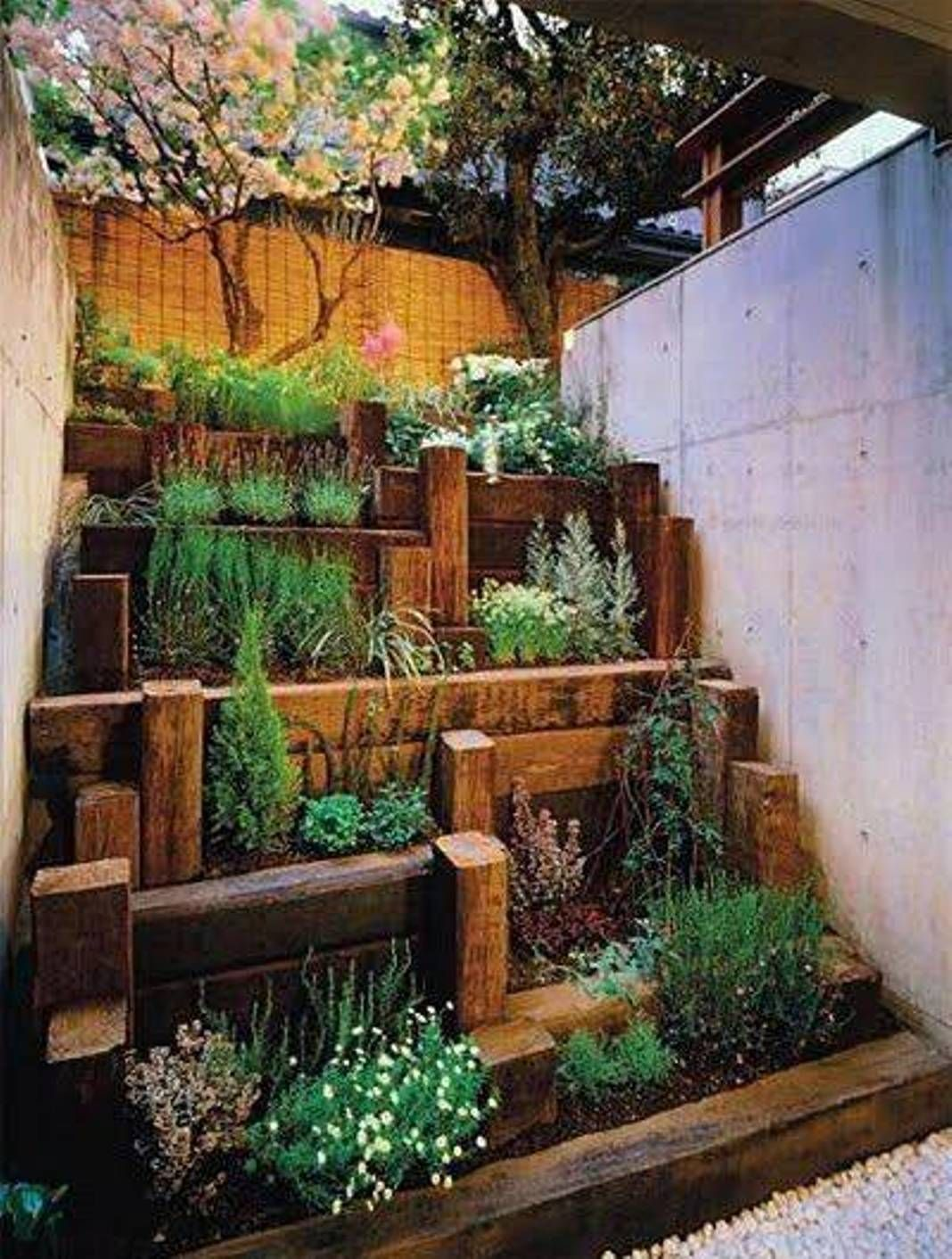 Great idea for a small succulent garden design more depth for Small backyard ideas