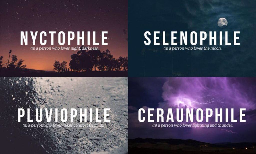 Pluviophile Selenophile And Semi Nyctophile Weird Words Night