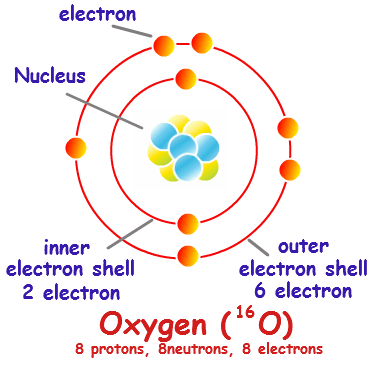 Electron Shell Diagram | General Chemistry | Science