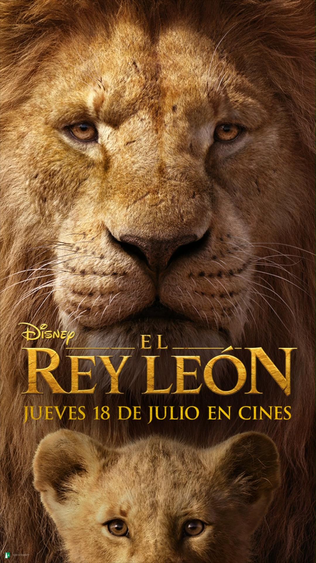 El Rey Leon Video El Rey Leon Pelicula Imagenes Del Rey Leon El Rey Leon