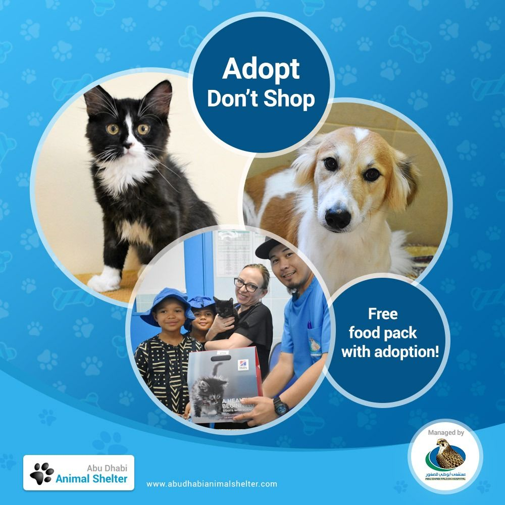 We Provide A Full Week S Worth Of Food With Every Adoption To Support New Pet Owners Adas Animalshelter Adoptdontshop نقدم In 2020 With Images Animal Shelter Dog List Animals