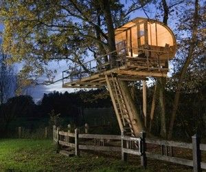 kids tree house for sale build architecture cool tree house houses kits build treehouse sale playhouses kids pictures adult wooden staircase lighting trees scratching posts cats top 15 amazing designs treehouses pinterest