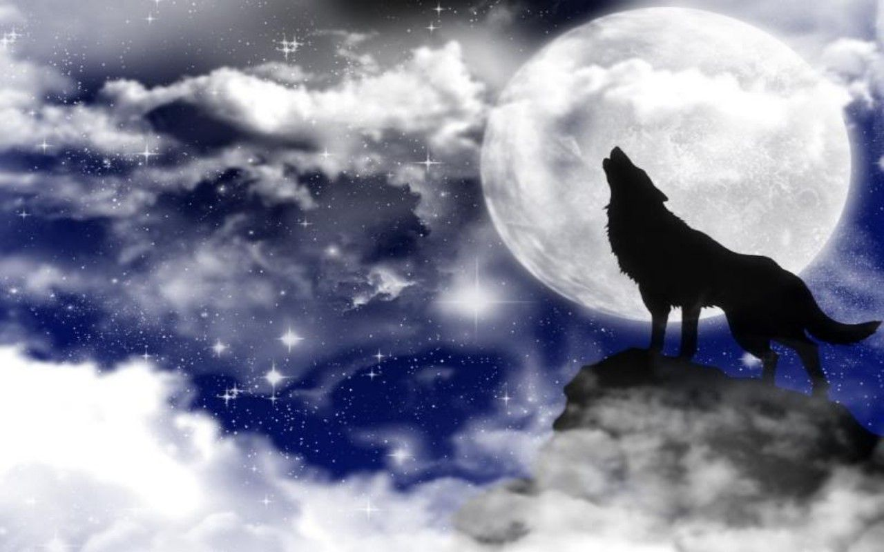 Howling Wolf Wallpaper 10770 Hd Wallpapers