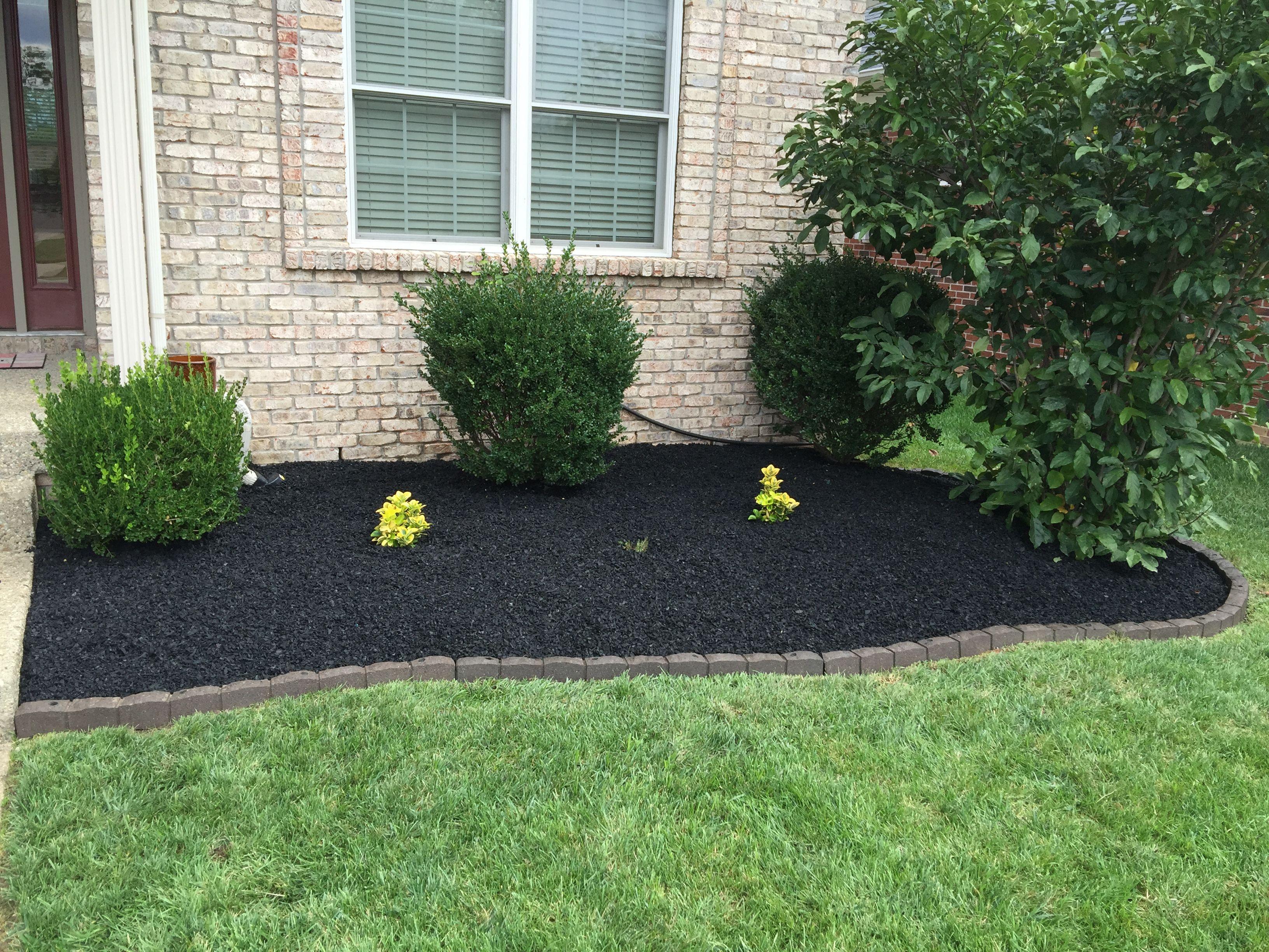 Rubber Mulch Blog Front yard landscaping, Landscape