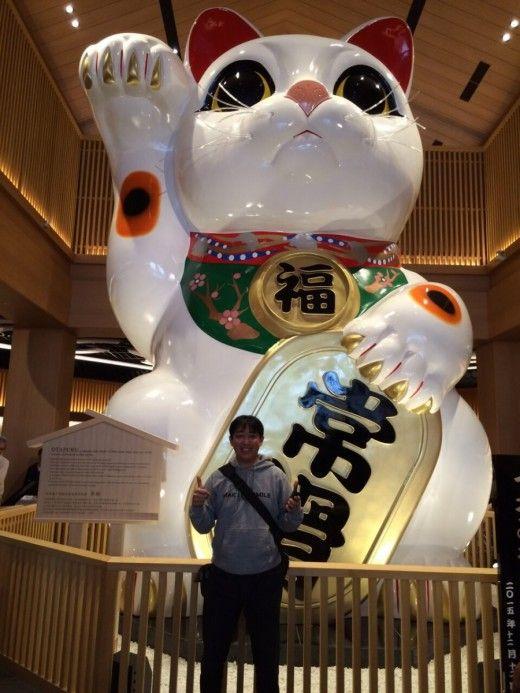 愛知県 常滑 イオンモール 招き猫 招き猫 ちょうちん まねきねこ