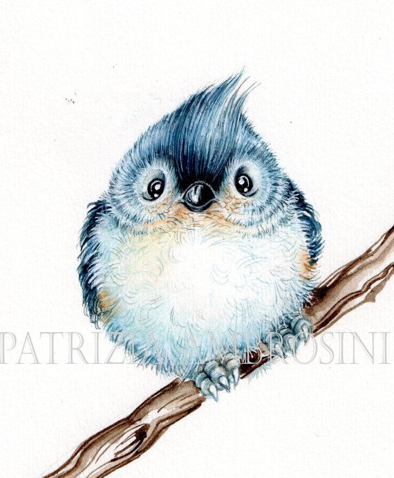 Original 7x9 Watercolour Titmouse NOT A by happyapplebumblebee, $45.00
