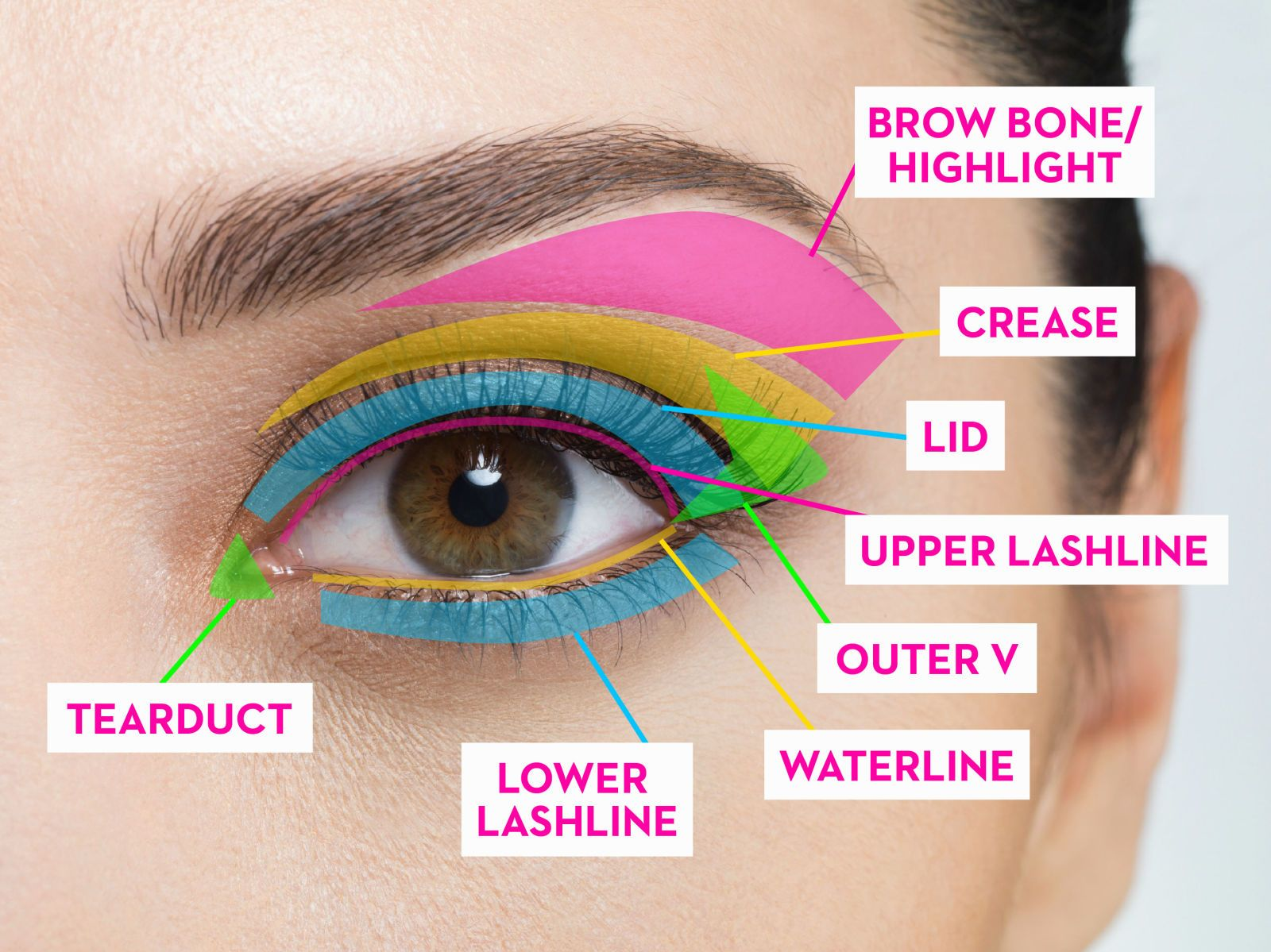 The Complete Guide to Where to Put Your Eye Makeup  Eye makeup