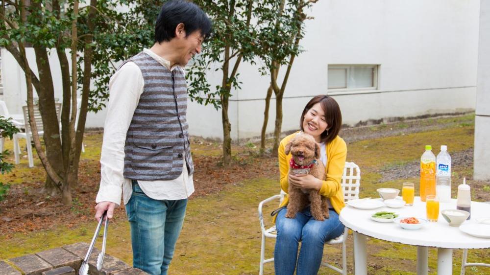 ペットと泊まれるリゾートプラン ペット同伴について コテージ ヒムカ ホテル 公式 フェニックス シーガイア リゾート 給餌 シーガイア 松林
