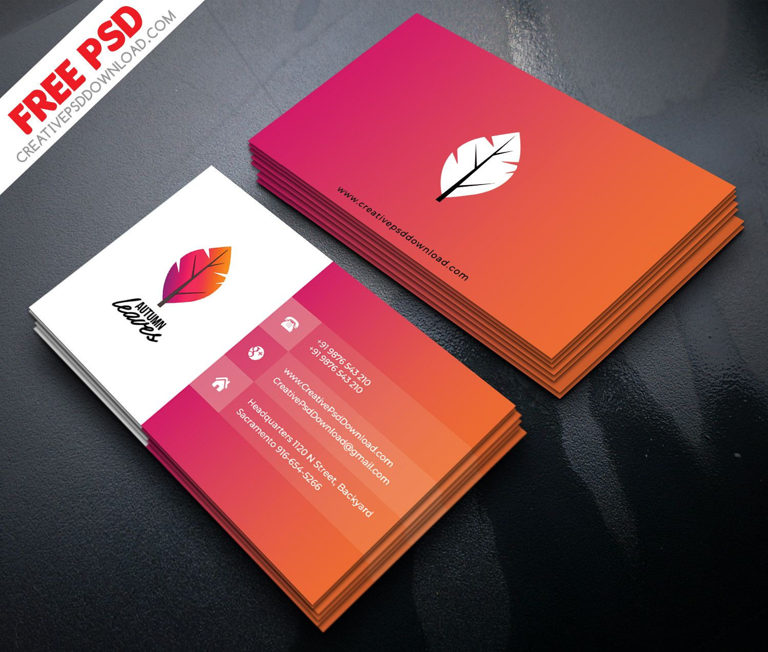 Professional Business Card Psd Free Download Regarding Visiting Card Templates Psd Visiting Card Templates Business Card Psd Free Free Business Card Templates