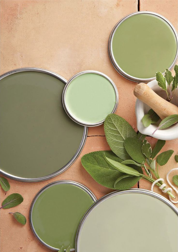 Sage Green Swatch -   16 sage green aesthetic ideas