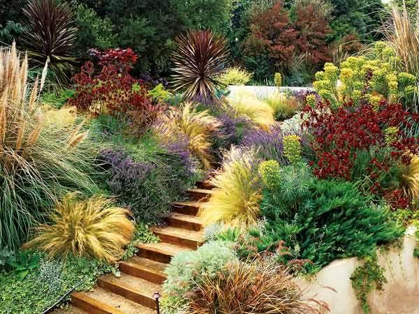 Garden Ideas Mediterranean mediterranean garden. low water needed, wind tolerant, color pops