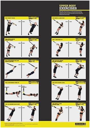 Trx Exercises Pdf : exercises, Exercises, Chart, Awesome, Upper, Workout, Berry, Workouts, Women,, Plan,, Routine