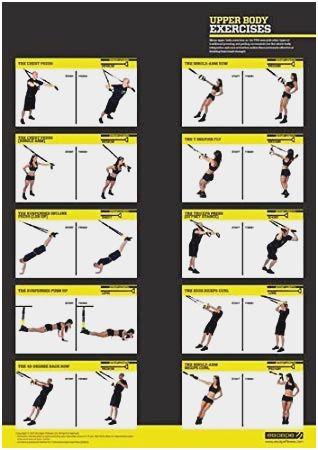 trx workout routine for beginners pdf  trx workout pdf