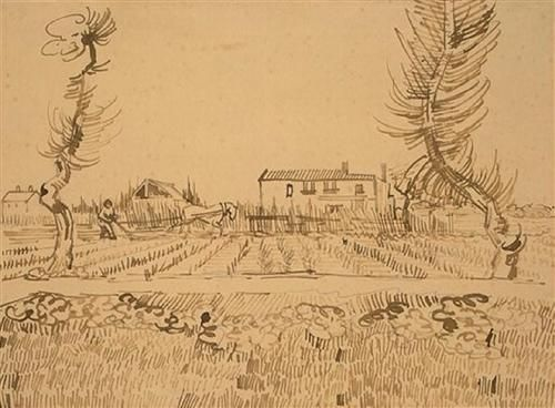 Ploughman in the Fields near Arles - Vincent van Gogh Vincent van