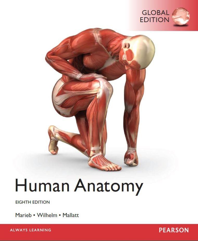 Human Anatomy 8th 8e Global Elaine Marieb Pdf Tetxbook Pinterest