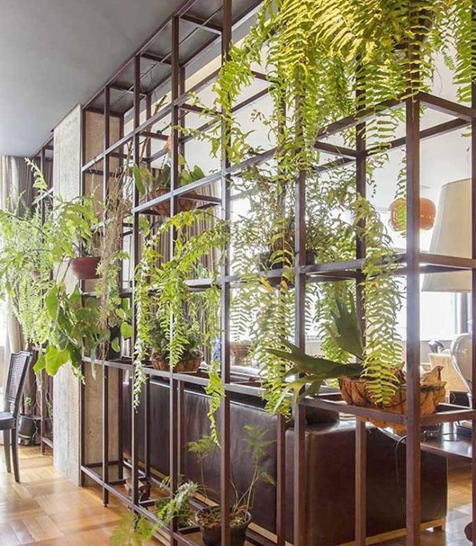 A estante de ferro separa ambientes e acomoda plantas neste ...