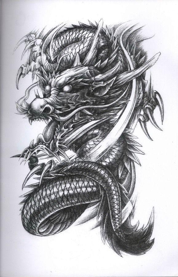 Dragon Tattoo Flash : dragon, tattoo, flash, Dragon, Tattoo, Diseno, Designs,