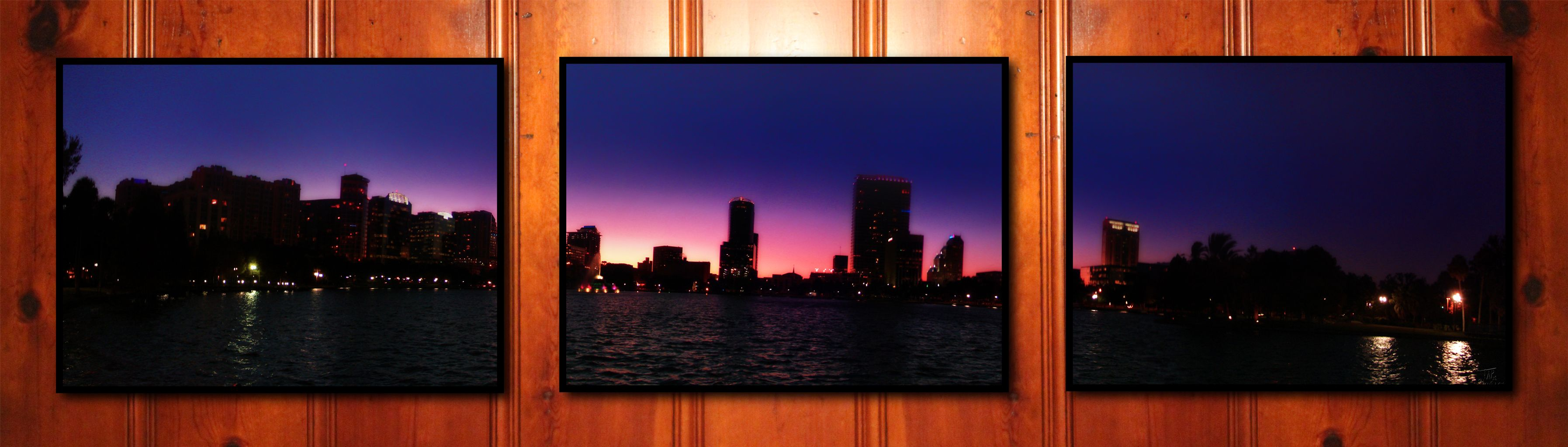 another beautiful orlando sunset captured in a downtown park and printed out into 11x14 frames...