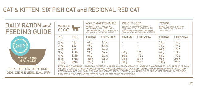 Feeding chart for cats by weight loss google search also rh pinterest