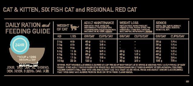Cat Kitten Orijen Cat Feeding Schedule Cat Weight Chart Cat Feeding Chart