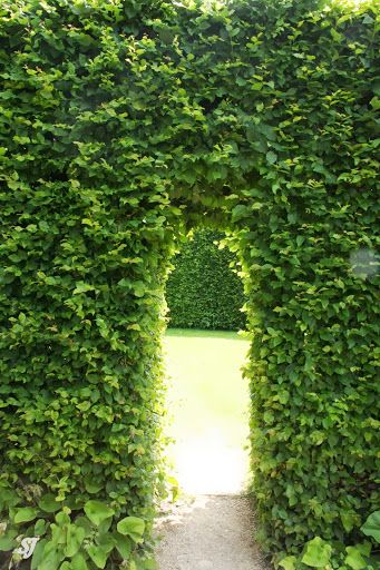 One Of The Hedge Portals At Hidcote Manor Garden With Images